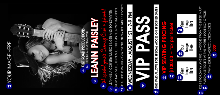 vip admission ticket template