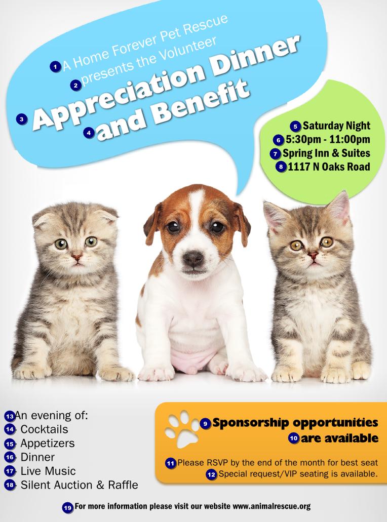 dog adoption flyer template - animal rescue flyer