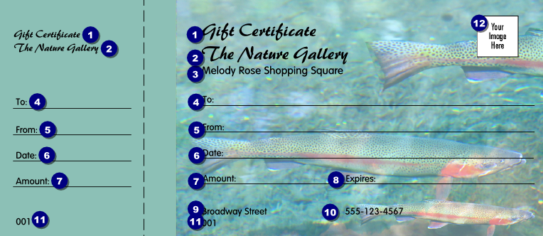 shopping certificate template - nature series trout gift certificate