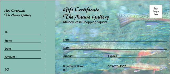 Nature Series - Trout Gift Certificate